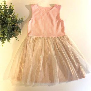 Healthtex pink princess tulle dress 5T